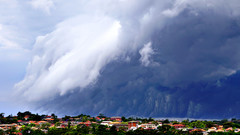 Cs shelfcloud
